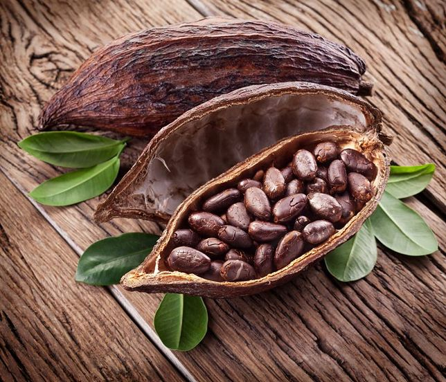https://i.wpimg.pl/O/644x552/d.wpimg.pl/1004272692-733588325/kakaowiec-czekolada.jpg