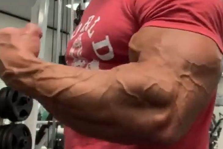 Biceps Lee Labrady