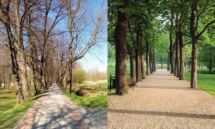 Duszniki-Zdrój, Aleja Fryderyka Chopina przed i po przebudowie