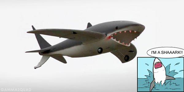 latający rekin