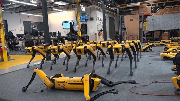 Robot-pies Spot od Boston Dynamics.