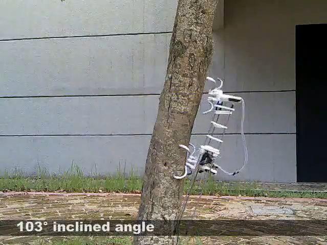 Treebot w akcji