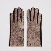 Sinsay - Rękawiczki z wężowym wzorem - Jasny szary