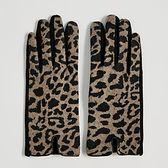 Sinsay - Rękawiczki w panterkę - Wielobarwny