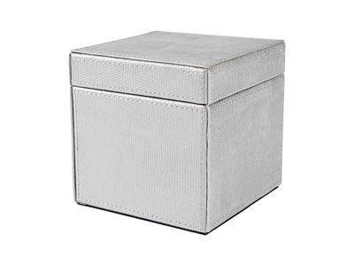 pudło dekoracyjne Silver Lizard