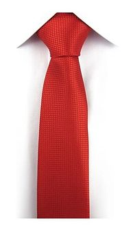Krawat w kratkę