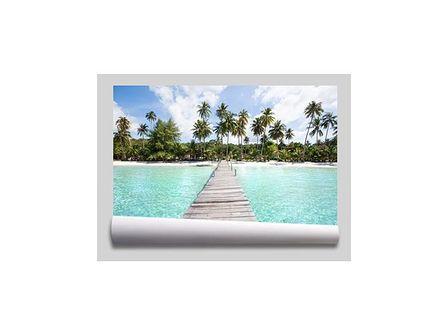 tapeta tropikalna plaża palmy morze