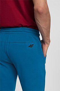 Spodnie dresowe męskie SPMD300 - niebieski